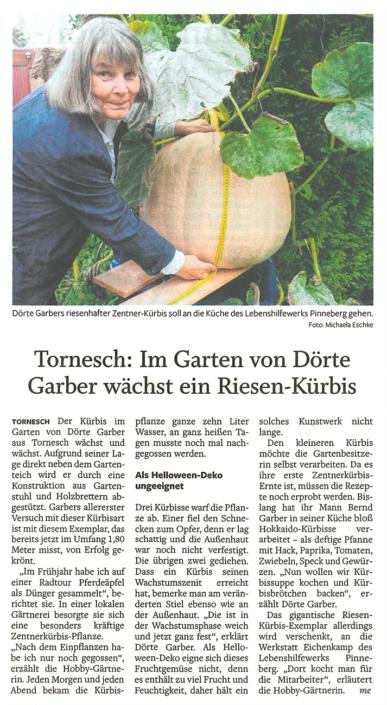 Artikel in den Uetersener Nachrichten vom 27.09.2021: Tornesch: Im Garten von Dörte Garber wächst ein Riesen-Kürbis